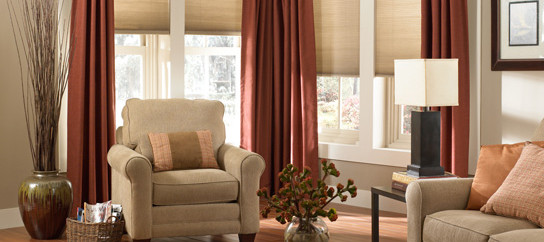 Living Room with Shades and Drapes