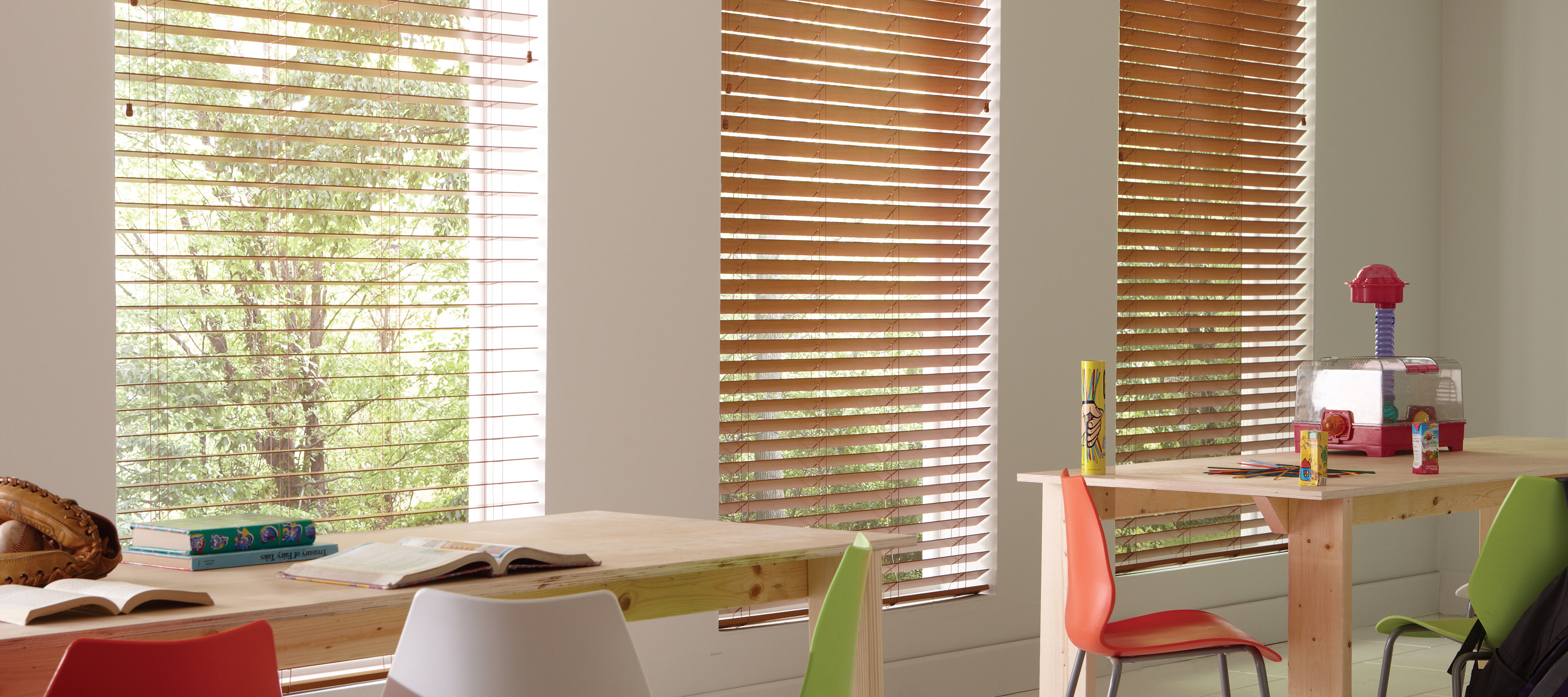 Window Covering Blinds