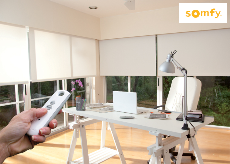Motorized Blinds with Controller